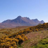 Ben Loyal in Sutherland - Attribution: jack_spellingbacon - Licence: CC 2.0 - https://creativecommons.org/licenses/by/2.0/deed.en - Source: https://commons.wikimedia.org/wiki/File:Ben_Loyal_Scotland.jpg